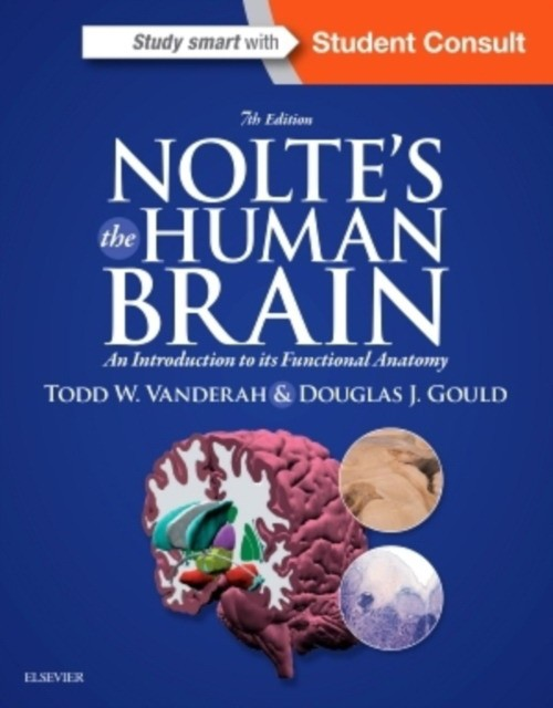 Nolte, John The Human Brain 9781455728596